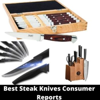Best steak knives consumer reports