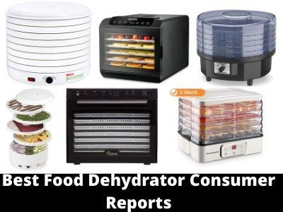 Best Food Dehydrator Consumer Reports Reviews 2020