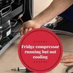 Fridge Compressor Running But Not Cooling