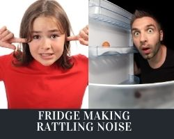Fridge Making Rattling Noise