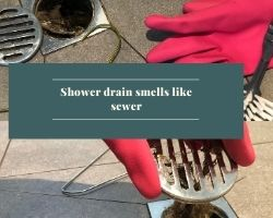 Shower Drain Smells Like Sewer