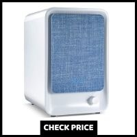 Best Air Purifiers Under $100